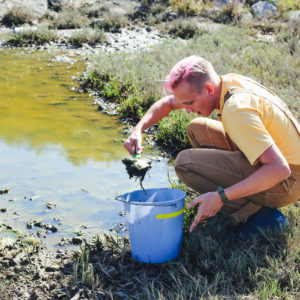 a graduate student scoops mud into a bucket from a tidal pond